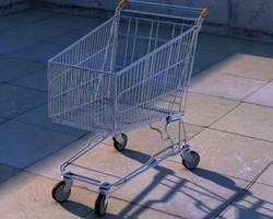 Menu: Einkaufswagen