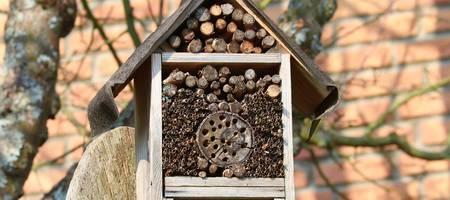Ein Insektenhotel mit Bäumen im Hintergrund ©Pixabay