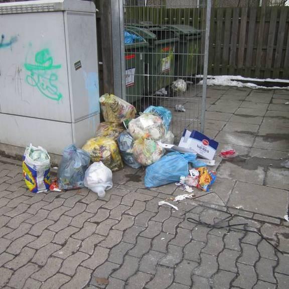 Besichtigung von Müllplätzen